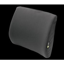 Comfort Company :: Molded Lumbar Support Pad with Side Lateral Support
