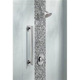 "Image of Iso Polished Stainless Steel 1.25"" x 36"" Grab Bar"