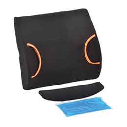 Image of Back Cushion with Hot/Cold Pack