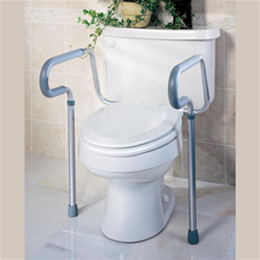 Guardian :: Toilet Safety Rails