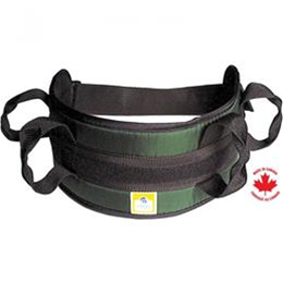 Image of Padded Transfer Belt, Auto Buckle